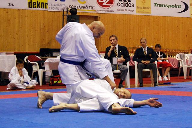 Bunkai Kata Competition