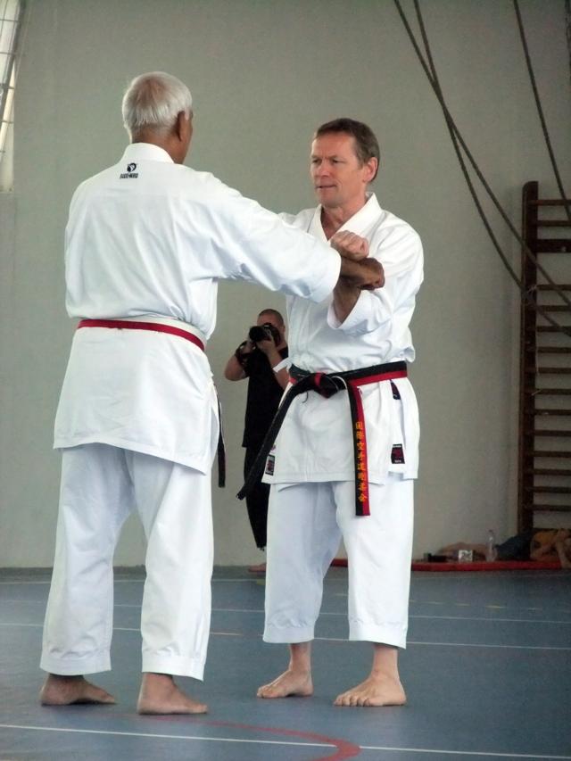 Sanchin Kata with Partner