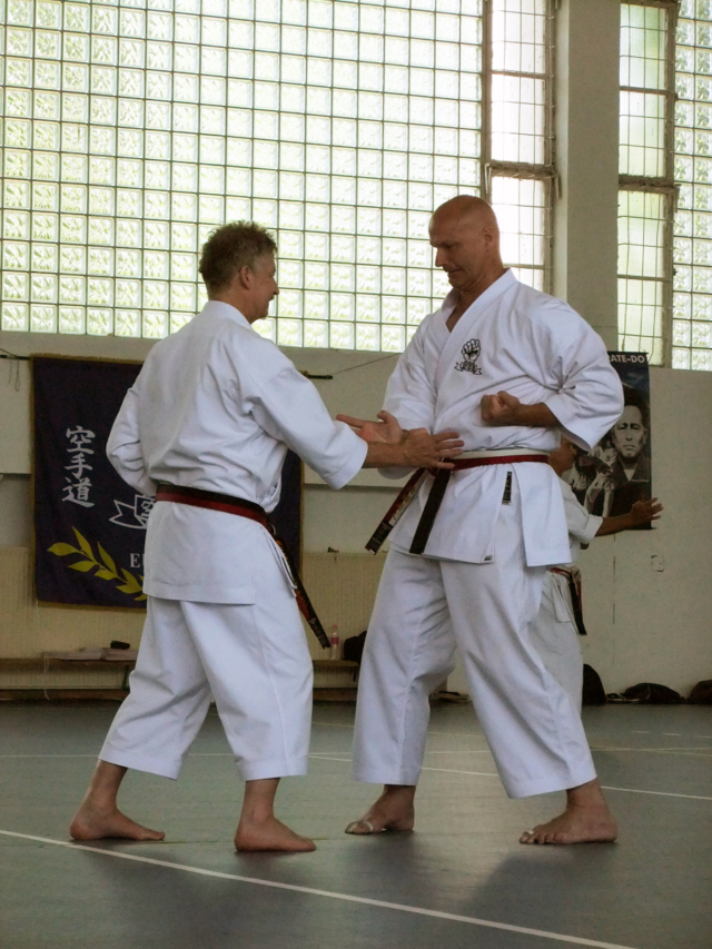 Tensho Kata with partner