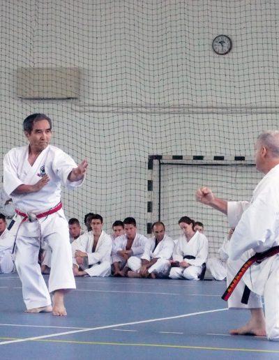 em-2011-ungarn-44