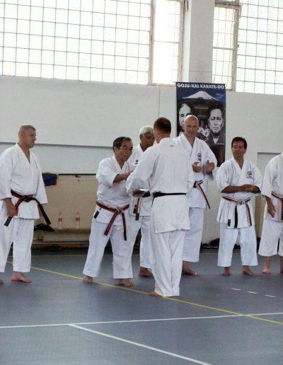 em-2011-ungarn-45