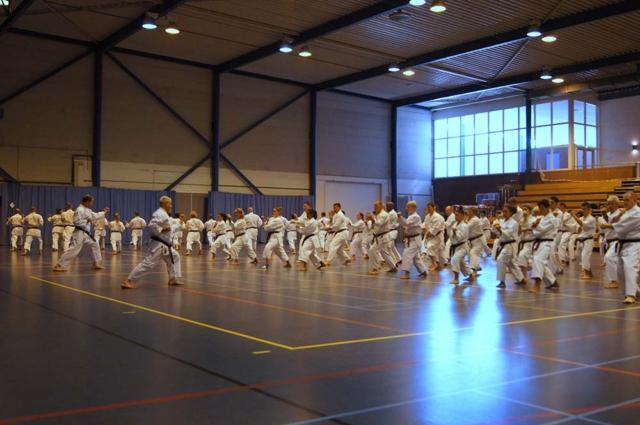 Kihon Training