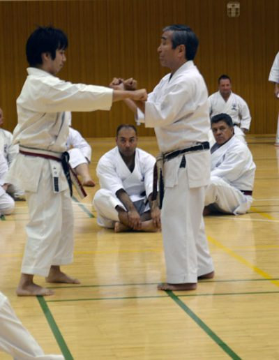 shihanlehrgang-japan-6