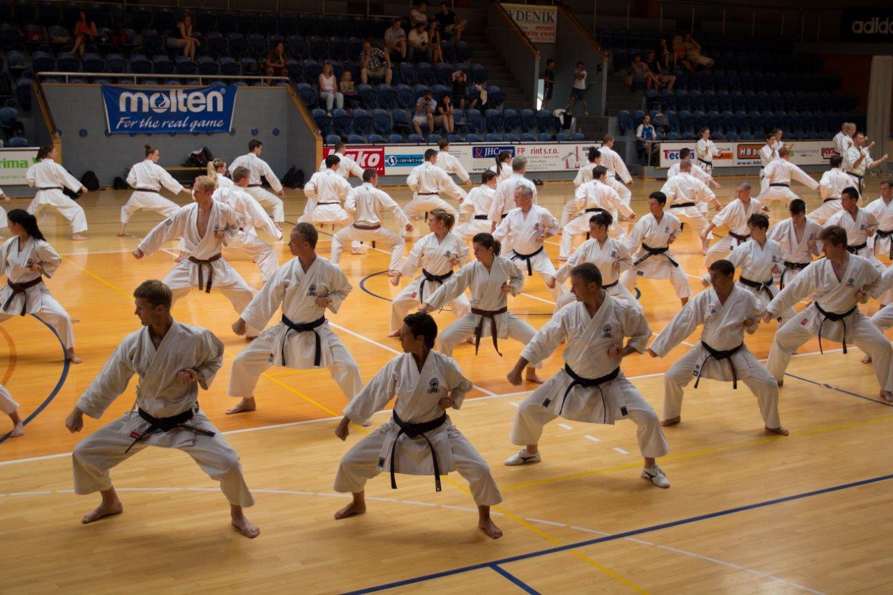 Group of Karatekas practicing Kihon